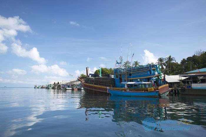 FISHIN船