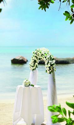 塞舌爾婚禮
