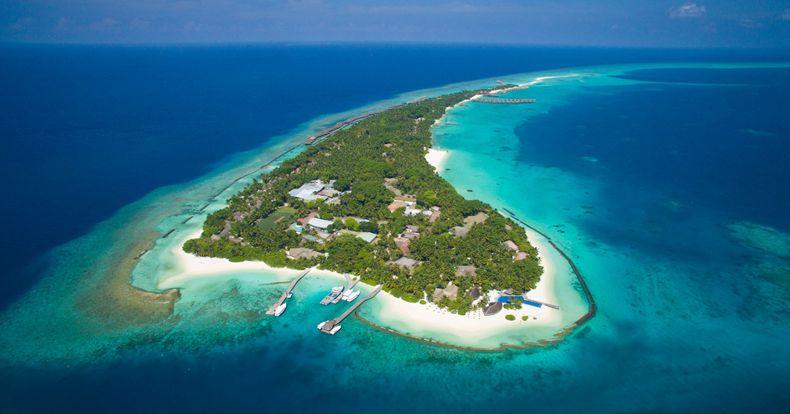 提供新鲜的马尔代夫海鲜以及高品质的进口海鲜.
